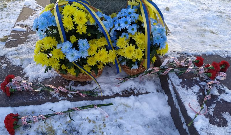 В Доброполье отметили День Соборности Украины, фото-2