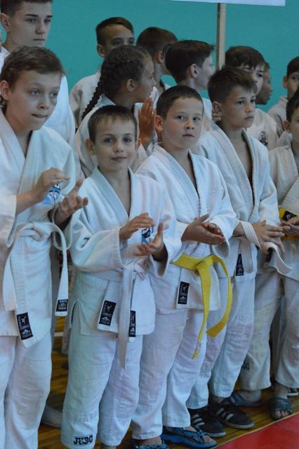 У Добропіллі відбувся IV відкритий турнір з дзюдо, фото-1