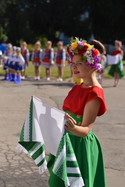 Сьогодні в Добропіллі відзначили 23-тю річницю Конституції України, фото-5